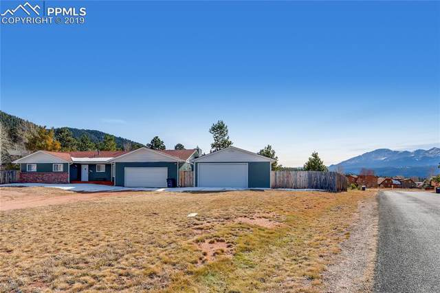 905 Forest Edge Place, Woodland Park, CO 80863 (#4280207) :: Tommy Daly Home Team