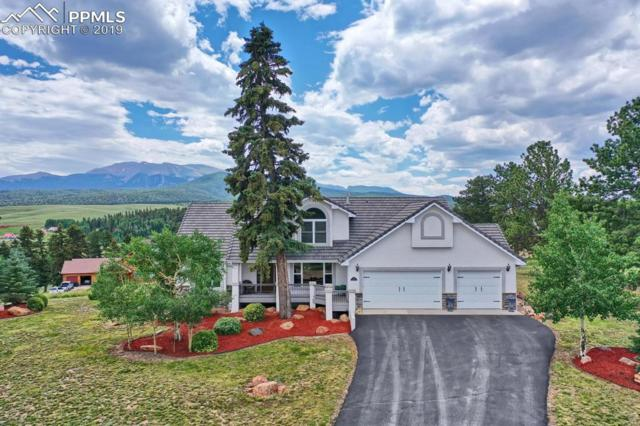 133 Matthew Road, Divide, CO 80814 (#4281046) :: Action Team Realty