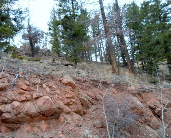 439 Andes Road, Cripple Creek, CO 80813 (#4284287) :: 8z Real Estate
