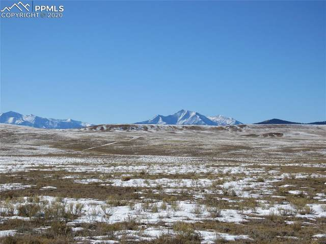 15225 County Road 53 Road, Hartsel, CO 80820 (#4285093) :: CC Signature Group