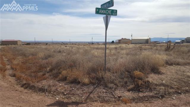 1654 N Amache Drive, Pueblo West, CO 81007 (#4287223) :: The Treasure Davis Team