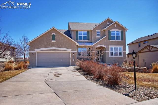 9979 Red Sage Drive, Colorado Springs, CO 80920 (#4289189) :: Tommy Daly Home Team