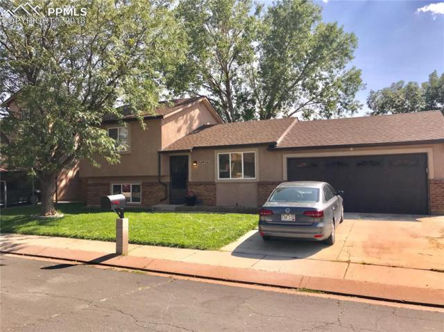 4950 Wineskin Circle, Colorado Springs, CO 80916 (#4293786) :: Jason Daniels & Associates at RE/MAX Millennium