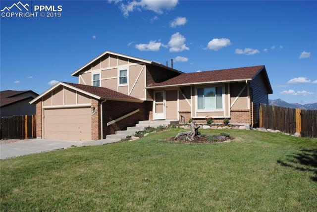 7660 Gibralter Drive, Colorado Springs, CO 80920 (#4301574) :: The Peak Properties Group