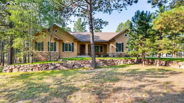 4781 Secluded Creek Court, Colorado Springs, CO 80908 (#4301734) :: The Kibler Group