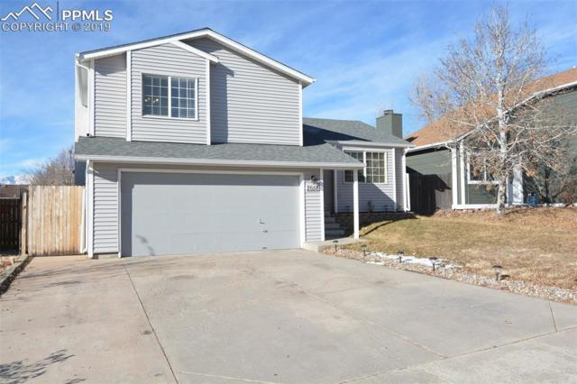 2658 Manassas Way, Colorado Springs, CO 80922 (#4302085) :: Relevate Homes | Colorado Springs