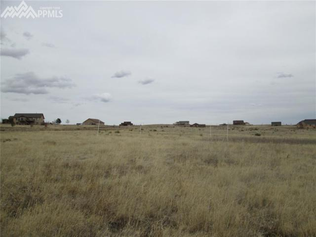 1655 Aldrin Place, Colorado Springs, CO 80929 (#4302416) :: The Treasure Davis Team