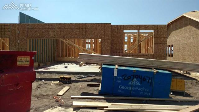 11463 Rill Point, Colorado Springs, CO 80921 (#4302720) :: 8z Real Estate