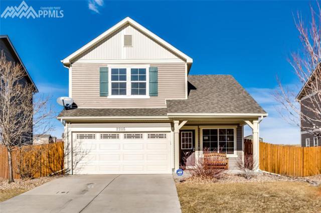 2205 Reed Grass Way, Colorado Springs, CO 80915 (#4303005) :: 8z Real Estate