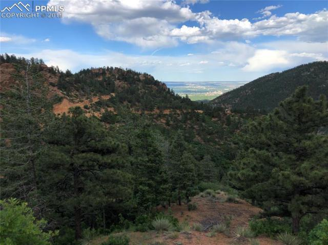 535 Day Spring View, Manitou Springs, CO 80829 (#4308589) :: Action Team Realty