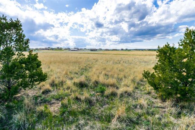 11970 Silver Concho Trail, Elbert, CO 80106 (#4309461) :: 8z Real Estate
