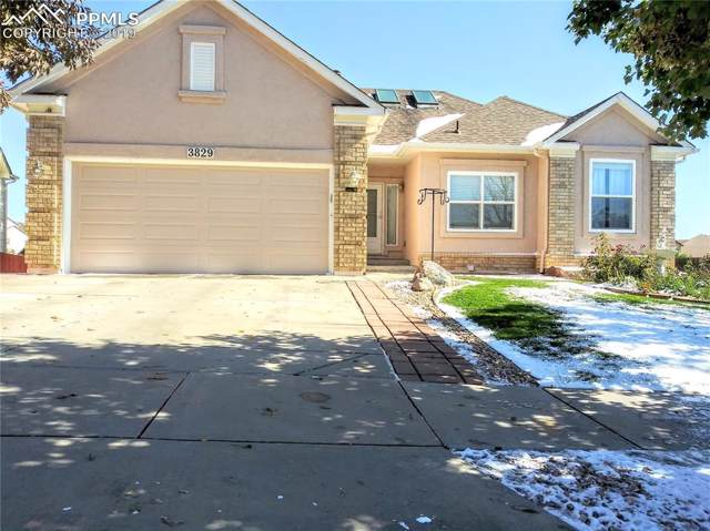 3829 Range Drive, Colorado Springs, CO 80922 (#4312078) :: Tommy Daly Home Team