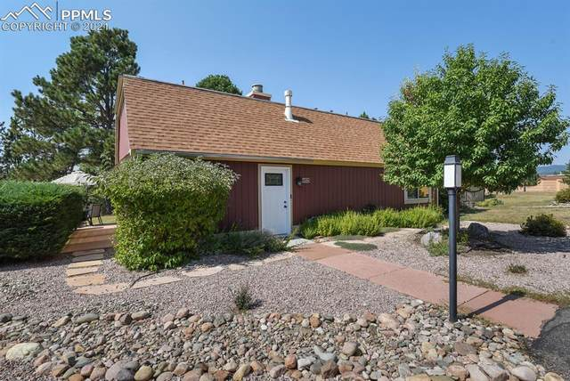 1723 Woodmoor Drive, Monument, CO 80132 (#4317616) :: Tommy Daly Home Team