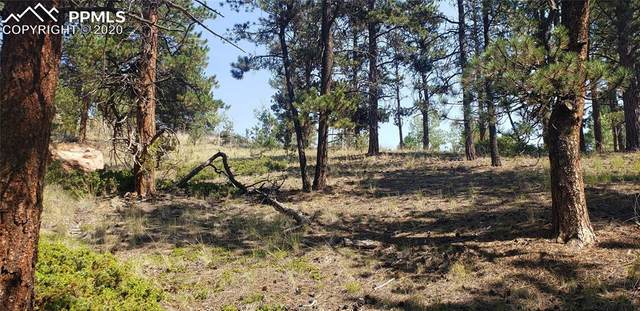 151 Chipeta Creek Trail, Florissant, CO 80816 (#4318122) :: Action Team Realty
