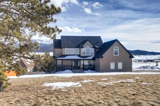 105 Matthew Road, Divide, CO 80814 (#4318643) :: CENTURY 21 Curbow Realty