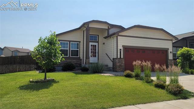6949 Dusty Miller Way, Colorado Springs, CO 80908 (#4321909) :: Tommy Daly Home Team