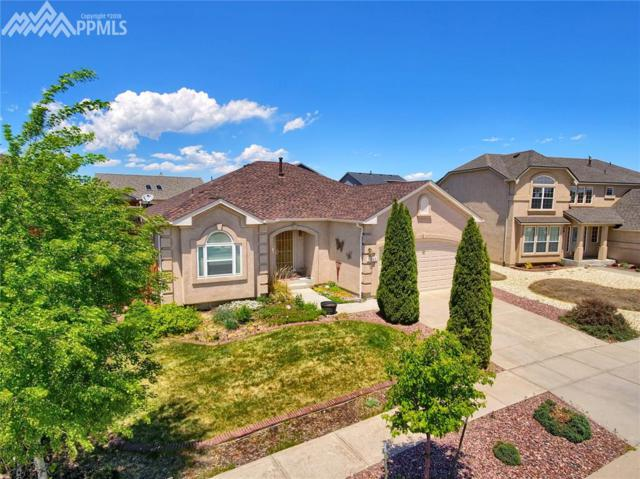 7268 Amberly Drive, Colorado Springs, CO 80923 (#4324069) :: The Peak Properties Group