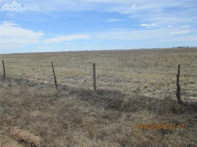 00 County 137 Road, Rush, CO 80830 (#4324931) :: Jason Daniels & Associates at RE/MAX Millennium