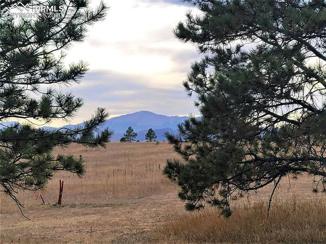17274 Abert Ranch Drive, Colorado Springs, CO 80908 (#4326956) :: Finch & Gable Real Estate Co.