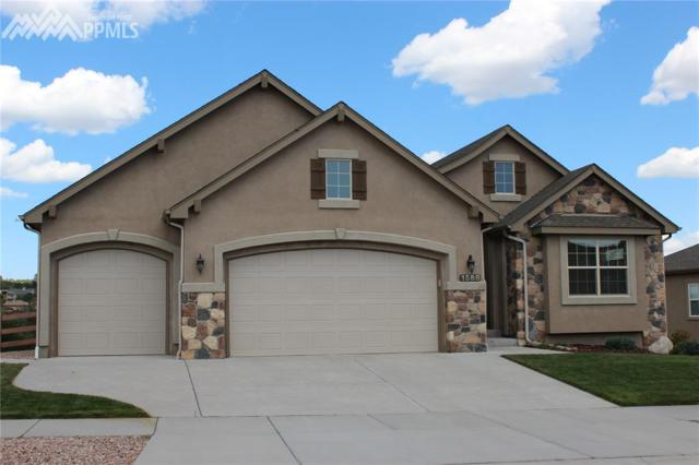 1588 Yellow Tail Drive, Colorado Springs, CO 80921 (#4329021) :: The Daniels Team