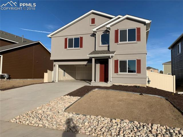 10753 Calista Way, Fountain, CO 80817 (#4329737) :: The Treasure Davis Team
