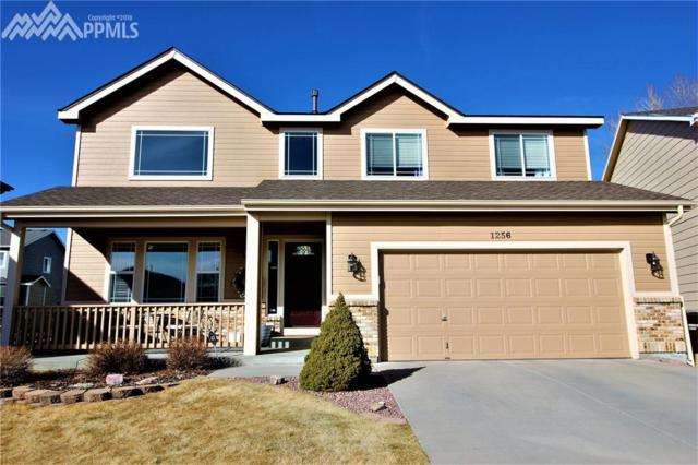 1256 Dream Lake Court, Colorado Springs, CO 80921 (#4330566) :: 8z Real Estate