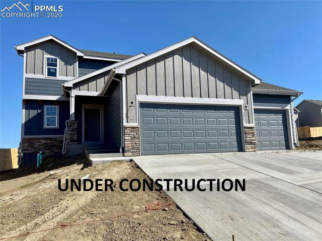 10033 Castor Drive, Colorado Springs, CO 80925 (#4332127) :: Fisk Team, RE/MAX Properties, Inc.