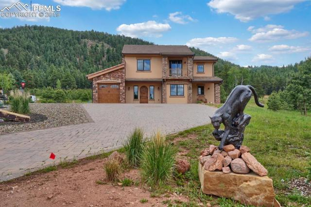 841 Majestic Parkway, Woodland Park, CO 80863 (#4334542) :: The Treasure Davis Team