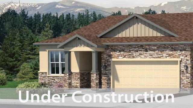 9333 Kathi Creek Drive, Colorado Springs, CO 80924 (#4335285) :: Harling Real Estate