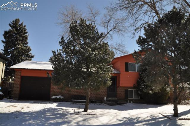 4411 Misty Drive, Colorado Springs, CO 80918 (#4337134) :: 8z Real Estate