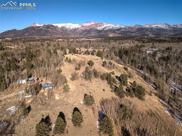 8765 Rhyolite Mountain Mesa, Cripple Creek, CO 80813 (#4338855) :: Action Team Realty