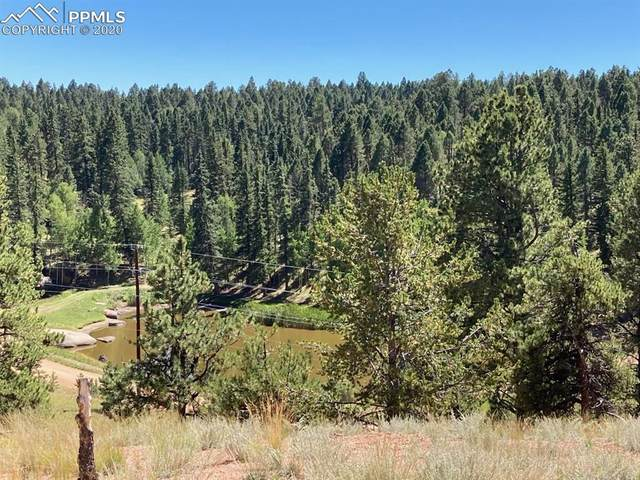 85 W Eldorado Circle, Florissant, CO 80816 (#4339433) :: Compass Colorado Realty