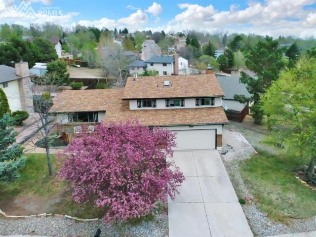 5260 Artistic Circle, Colorado Springs, CO 80917 (#4342377) :: Fisk Team, RE/MAX Properties, Inc.