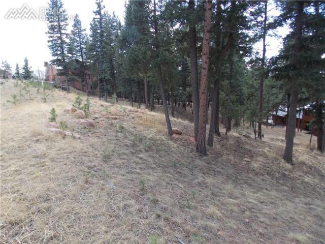 406 Falcons Rest Place, Woodland Park, CO 80863 (#4343548) :: 8z Real Estate