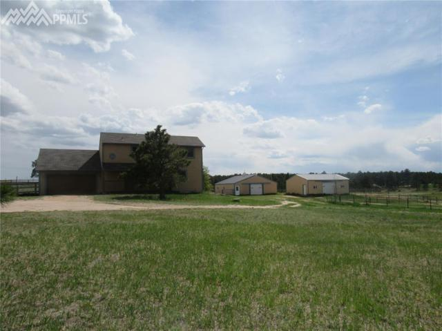 12655 Forest Green Drive, Elbert, CO 80106 (#4344506) :: 8z Real Estate