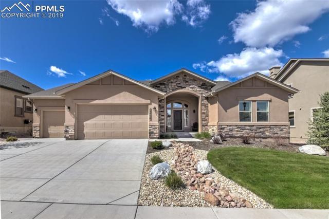 12458 Pensador Drive, Colorado Springs, CO 80921 (#4346616) :: Action Team Realty