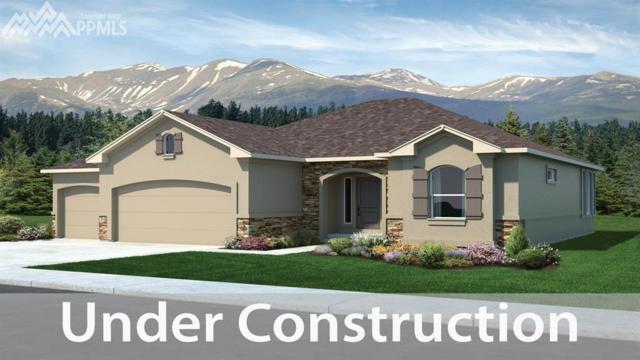 5667 Thurber Drive, Colorado Springs, CO 80924 (#4346856) :: 8z Real Estate