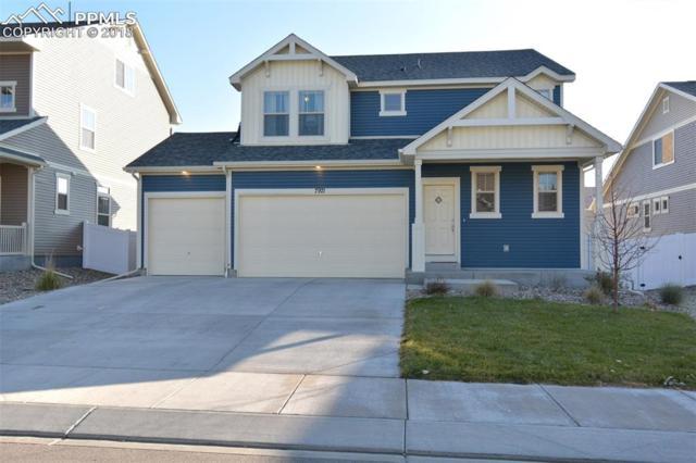 7971 Moondance Trail, Fountain, CO 80817 (#4347670) :: Venterra Real Estate LLC