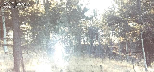 188 Timber Ridge Road, Divide, CO 80814 (#4348759) :: 8z Real Estate