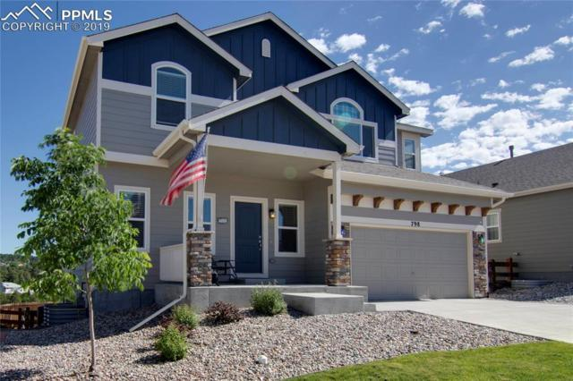 798 Gold Canyon Road, Monument, CO 80132 (#4354169) :: Action Team Realty