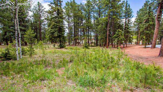 620 Chipmunk Drive, Woodland Park, CO 80863 (#4354497) :: Finch & Gable Real Estate Co.