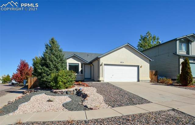 8254 Hames Drive, Colorado Springs, CO 80951 (#4358447) :: Compass Colorado Realty