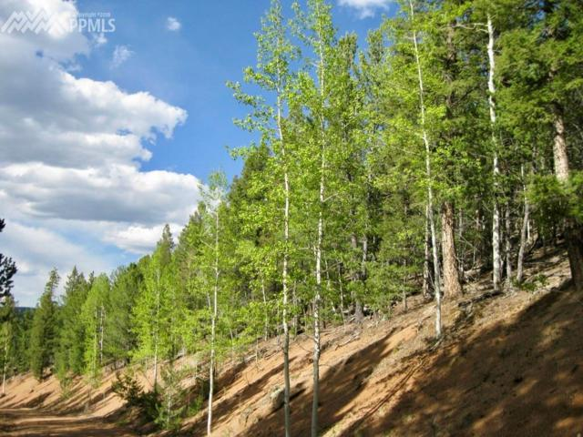 2213 Pikes Peak Drive, Divide, CO 80814 (#4362452) :: 8z Real Estate