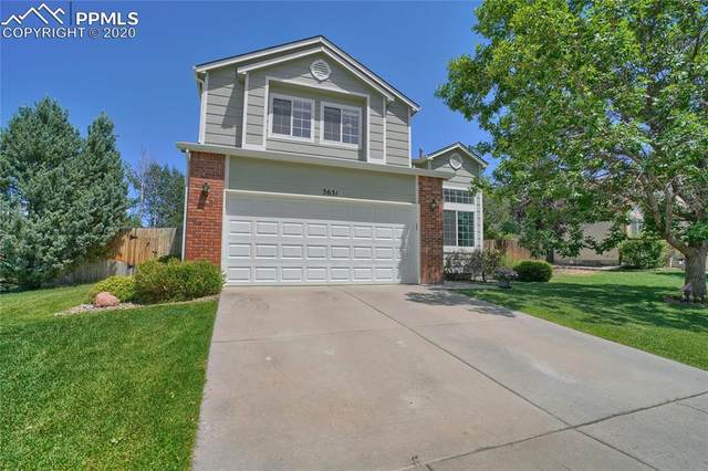 3651 Bareback Drive, Colorado Springs, CO 80922 (#4367997) :: 8z Real Estate
