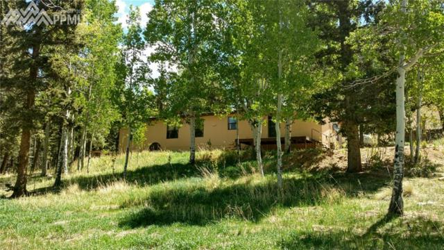 1060 Cantiberry Road, Divide, CO 80814 (#4368132) :: The Hunstiger Team