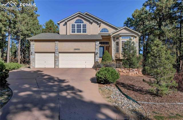 15971 Woodmeadow Court, Colorado Springs, CO 80921 (#4372661) :: The Hunstiger Team