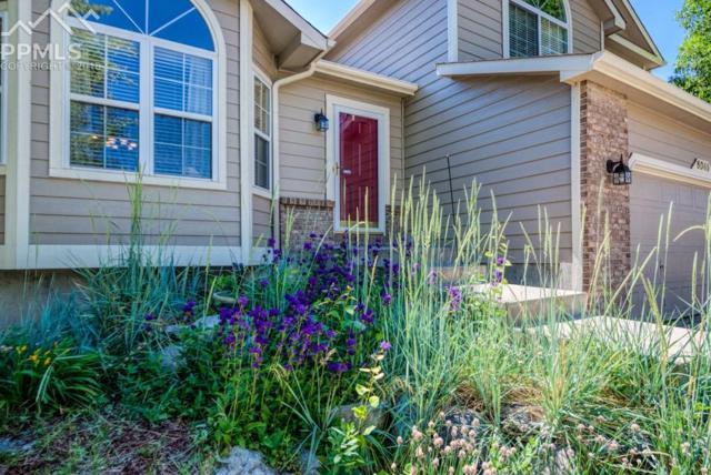 6045 Fescue Drive, Colorado Springs, CO 80923 (#4373439) :: The Treasure Davis Team