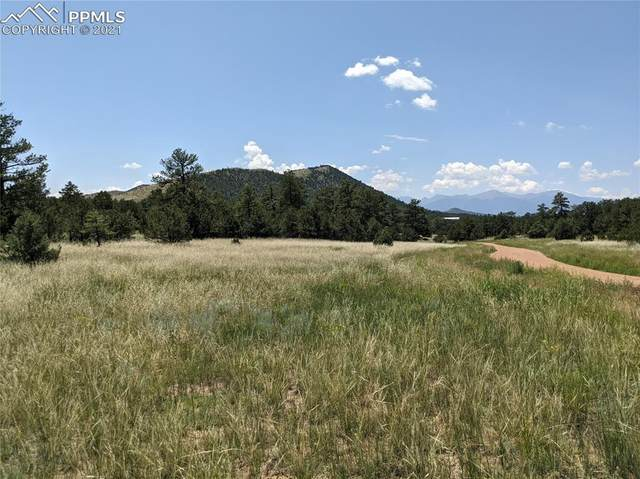 4995 Copper Gulch Road, Cotopaxi, CO 81223 (#4380601) :: Action Team Realty