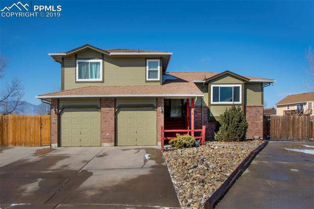 460 Garwood Court, Colorado Springs, CO 80911 (#4380864) :: 8z Real Estate