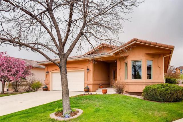2467 Spanish Oak Terrace, Colorado Springs, CO 80920 (#4382140) :: Jason Daniels & Associates at RE/MAX Millennium